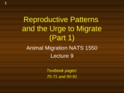 Presentation 9 - Migration is often intimately connecteed to breeding (Part 1)