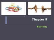 Ch. 5 Elasticity