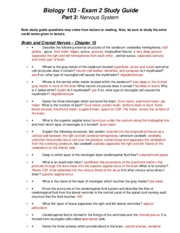 exam 2 study guide - part III
