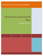 occupation_assessment_paper example
