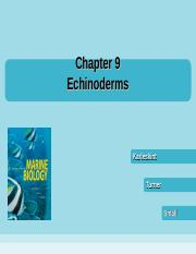 chapter9d echinoderms