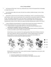 Ch 24_in class worksheet