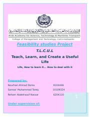 Feasibility_studies_Project.docx