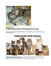 Nama Nama Kucing Docx 1 Patch Nama Untuk Kucing Kepogaul Com Pada Umumnya Orang Orang Yang Memlihara Kucing Berwarna Belang Atau Bergaris Garis Course Hero