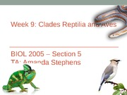 Week 9- Clade Reptilia and Clade Aves