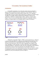Lab 10 N Acetylation--The Acetylation of a Primary Aromatic Amine (1)