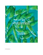 Ch8f_Photosynthesis.pptx