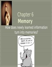 Ch 6 Memory Complete