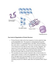 protein structure _chap1 and 2_