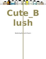 Cute_Blush Report.docx