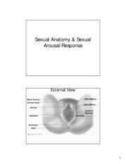 Lecture 2 _ 3 Sexual Anatomy Arousal and Response  - 04-06-10