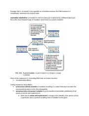 Errors in DNA and Replication in vitro and vivo.docx