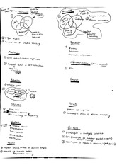 theorists notes