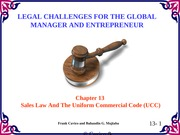 Chapter13 Legal Challenges