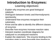 10Enzymes