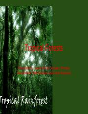 Tropical Forests.ppt (Recovered)