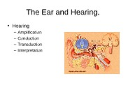 Ear_and_hearing fall 2011
