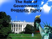The Role of Government and Domestic Policy(2)