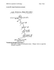 Lecture 22 Signal Transduction II
