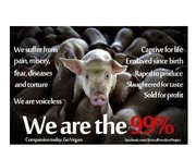 Peter_Singer___Animal_Rights