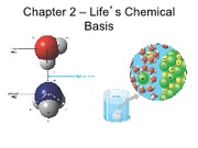 "Chapter 2 â€"" Life's Chemical Basis"