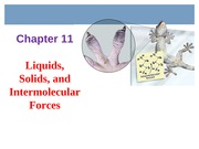Chapter 11 - Liquids, Solids and IMF
