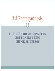 3.8 Photosynthesis