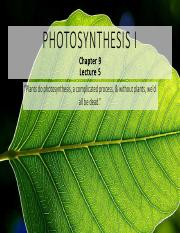 BIOL219 5 Photosynthesis I.pdf