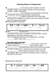 Photosynthesis and Respiration Notes.docx