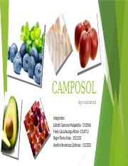 CAMPOSOL ppt  final