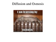 Diffusion and Osmosis PPT