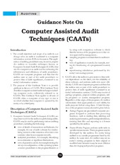2004 Chartered Accountant Guide on CAATs