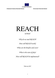 REACH_in_brief_2007