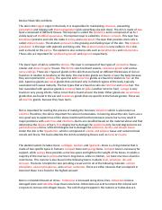 Review sheet Skin and Bone2016.docx