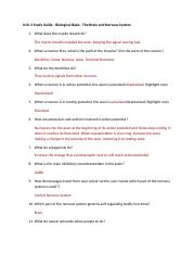 Unit 3 Study Guide - Biological Basis.docx