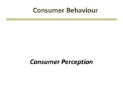 CB WK 4 - Consumer Perception