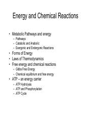 Bio 214 S16 Lecture 4  Energy and Catalysis.pdf