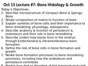 Lecture_7_Bi331_2015_Bone growth.pptx