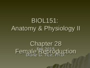 Chapter 28 - Female Reproduction (1).ppt
