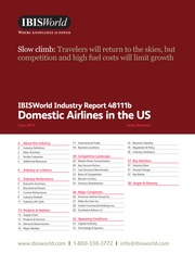 48111B Domestic Airlines in the US Industry Report