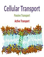 PPT 1 - Cell membrane & Transport.ppt