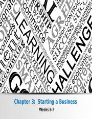 Week 6 Class Notes - Starting a Business.ppt