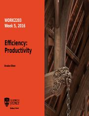 Week5-Efficiency_Productivity