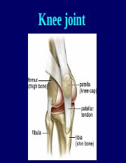 22 knee joint.ppt