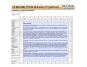 Profit and Loss Projection, 1Yr