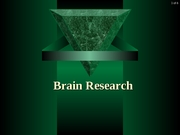 07. Brain Research