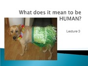 Lecture 3- What does it mean to be Human