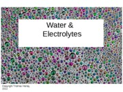 NUTR3362_Lecture11_water_elecs_in_class-1