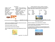 spanish flaschcards chapter 13