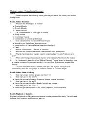 Module 4 Lesson Notes Guide Document.doc